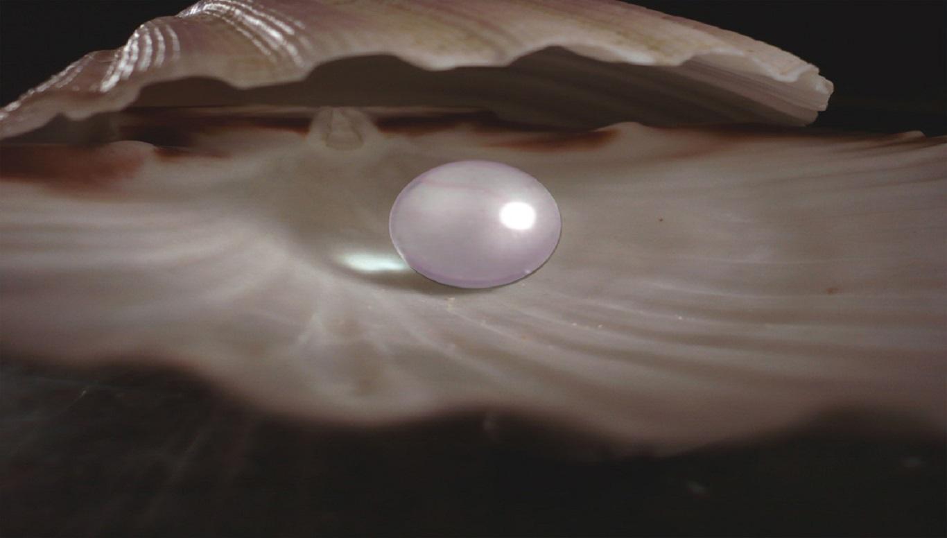 Pulire le perle. Il valore della sofferenza